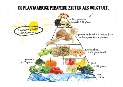 plantaardige-piramide